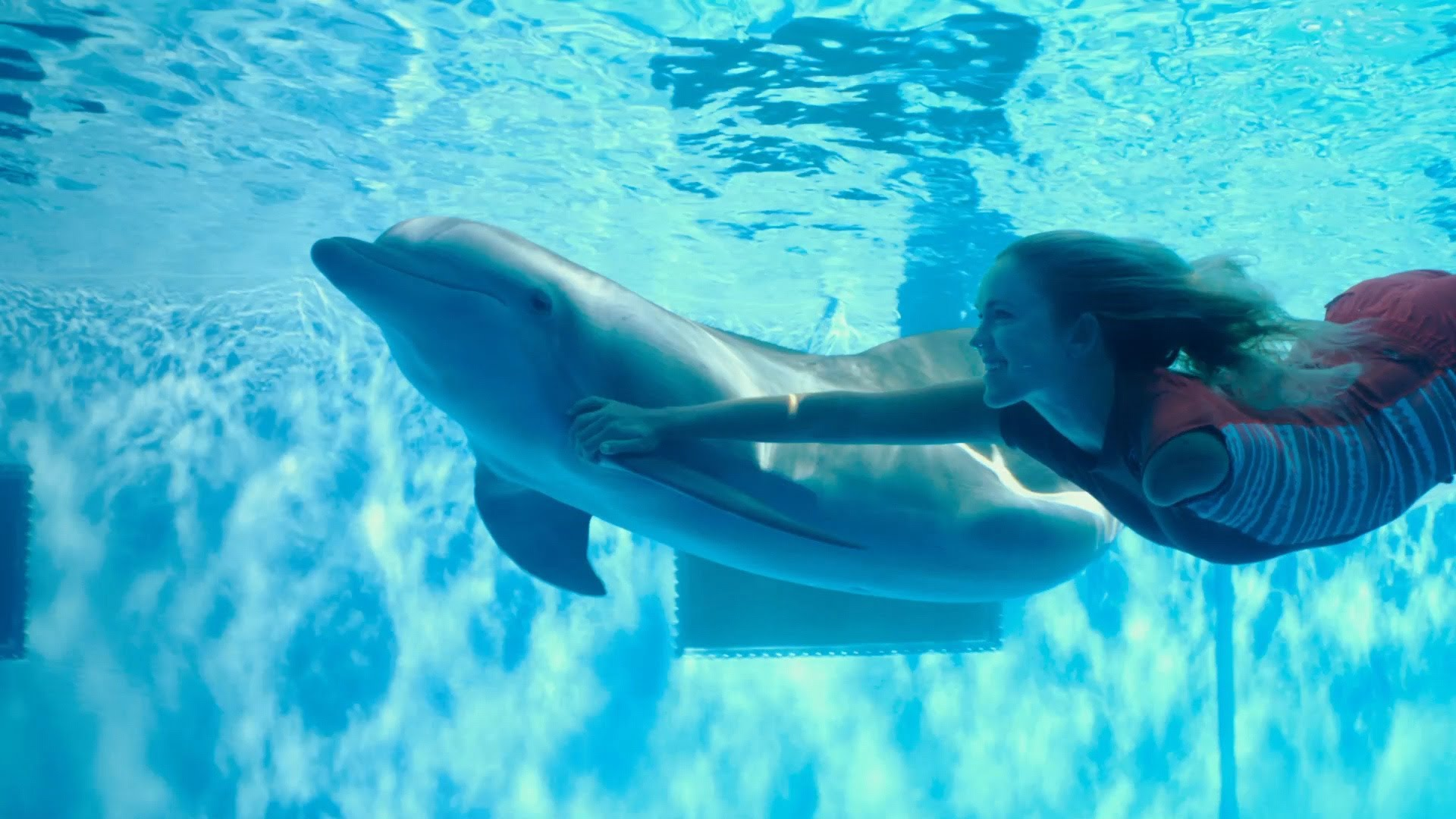 Dolphin Tale 2 Review Movies4kids