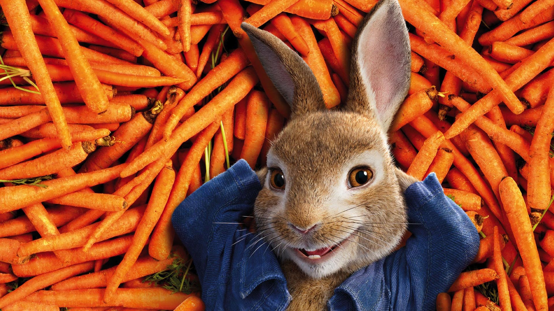 New peter rabbit trailer movies for kids - Peter rabbit movie wallpaper ...
