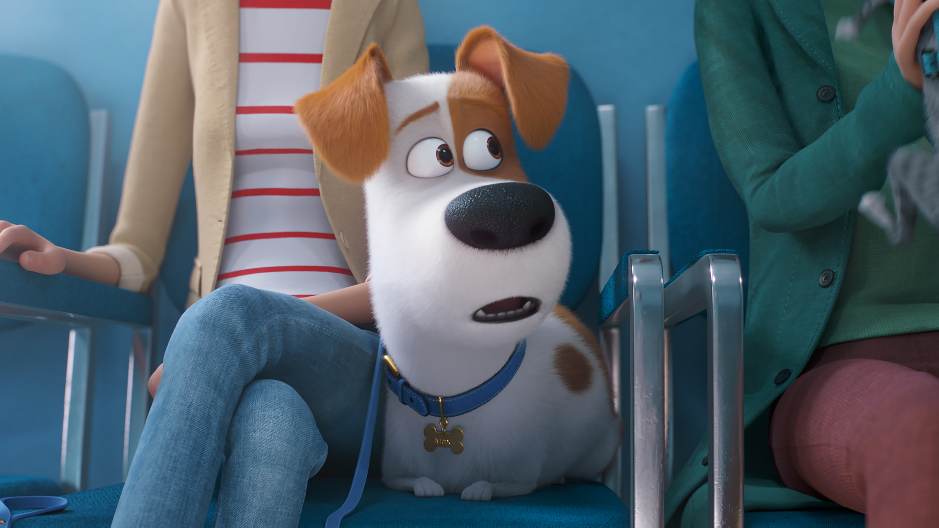 The Secret Life Of Pets 2 Review Movies For Kids