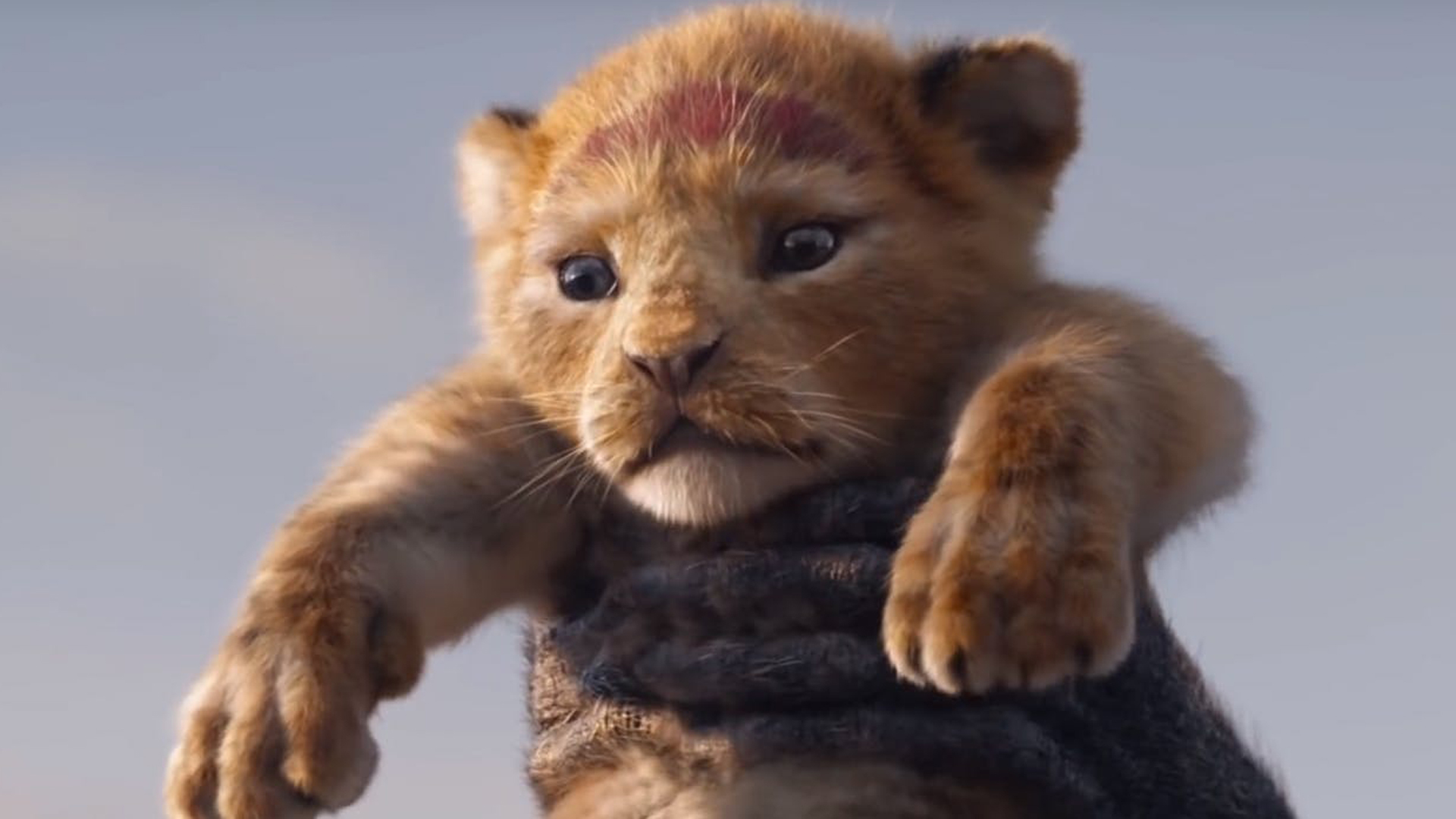 First Trailer For Disney S Live Action The Lion King Movies For Kids