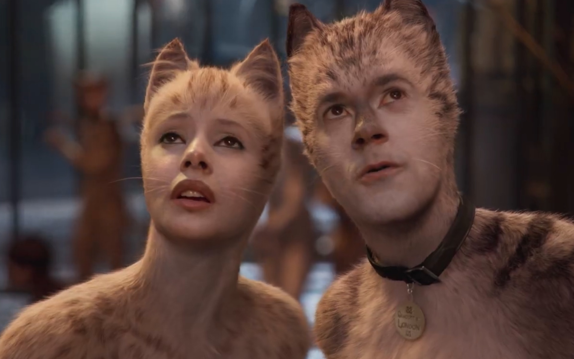 Cats review